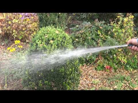 Czy podlewać ogród późną jesienią?