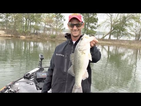 2019 Bassmaster Elite At Lake Hartwell
