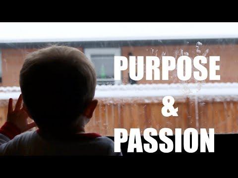 Keto Diet Grocery Food Haul : Purpose & Passion