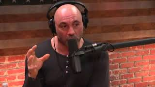 Joe Rogan - Becoming a Parent Changes You