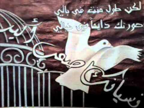الفنانه الفلسطينية دانيا خليل