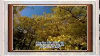 VANG PHAI MAY LA - Doan Chuan Tu Linh - Guitar Hawaii DOAN DINH
