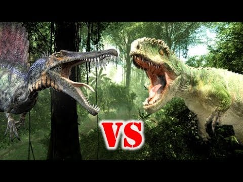 Spinosaurus Vs Giganotosaurus Who Would Win? - YouTubeGiganotosaurus Vs Spinosaurus