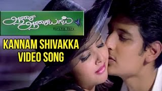 Aasai Aasaiyai Tamil Movie | Kannam Shivakka Video Song | Jiiva | Sharmelee | Mani Sharma