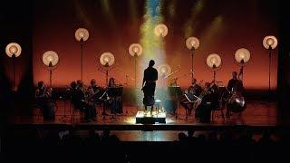 LUKA SULIC - Smooth Criminal (Live).mp3