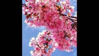 Cherry pink and apple blossom white-Eddie Calvert