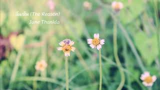 ฉันเห็น (The Reason) : Jane Thanida (Original Version - Nat Sakdatorn)
