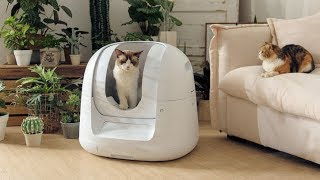 Footloose - automatic self cleaning litter box, no smell