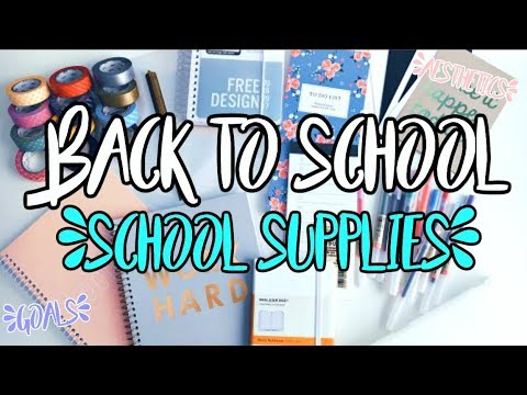 AESTHETIC AF BACK TO SCHOOL SUPPLIES HAUL 2018 !