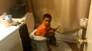 Angry birds on the toilet