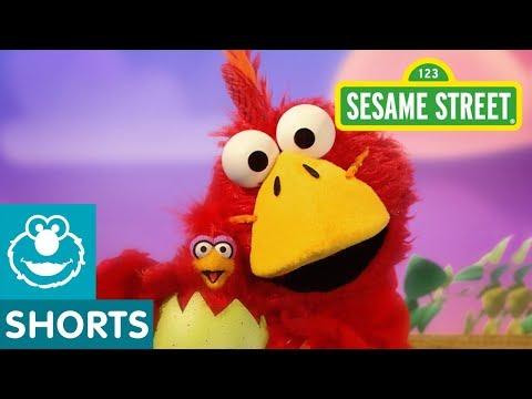 Sesame Street: Big Brother Bird | Elmo the Musical