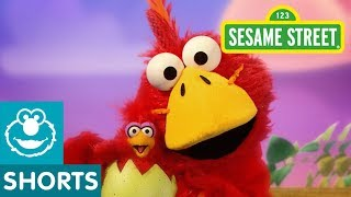 Sesame Street: Big Brother Bird | Elmo the Musical
