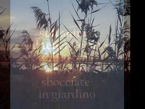 SARAI SALE -Poesia di Anna Maria Cherchi -  When I need you - Saxophone