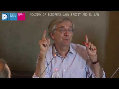 Academy of European Law:  Panel Discussion on Brexit and EU Law