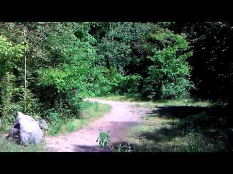 Hike ijams