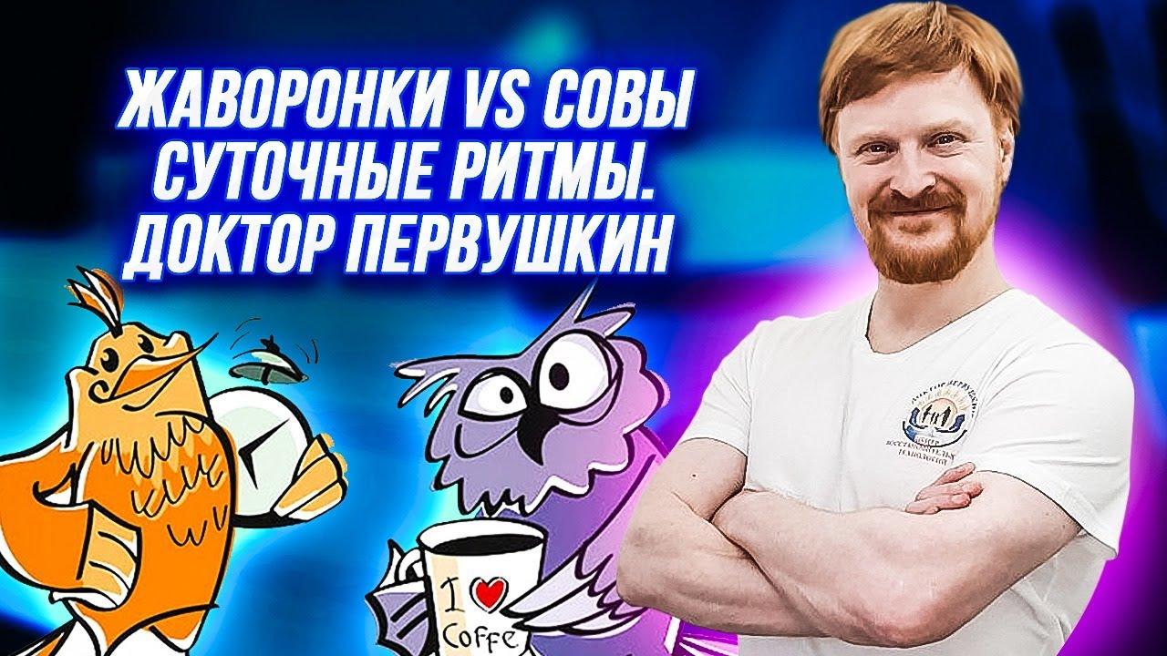Жаворонки VS Совы   Суточные ритмы   доктор Первушкин