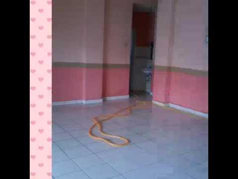 Cleaning service sekitar n.sembilan