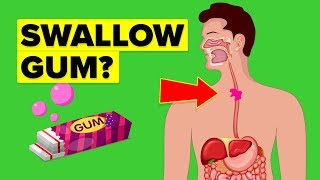 Why You Should Never Swallow Gum