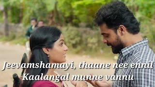 Jeevamshamayi Karaoke Song with Lyrics|Theevandi|karaoke song lyrics |