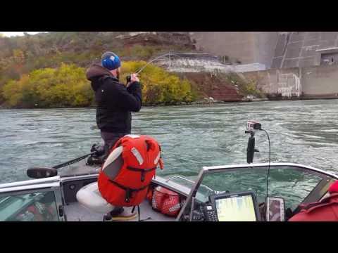 Niagara River Fishing With 1st Choice Fishing Charters