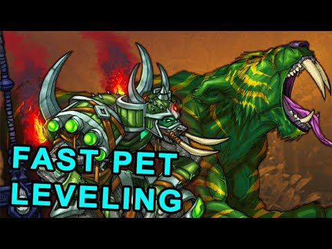 How To Level Up Hunter Pets Fast In Classic Wow Youtube