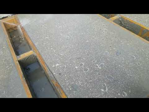 Shell oysters installation on concrete driveway finish