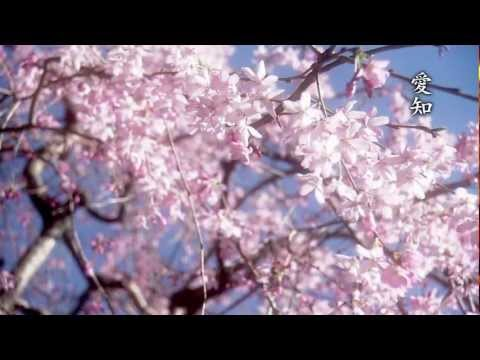 Seri Yoko- Shiki no uta [ 芹洋子 四季の歌 ] HD (Song of 4 Seasons)