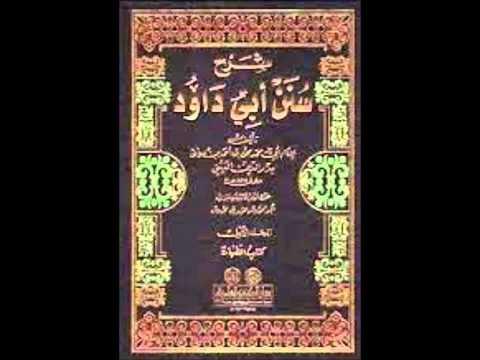 Sunan Abu Dawud  Sh/ Hassen Abdallah part 16