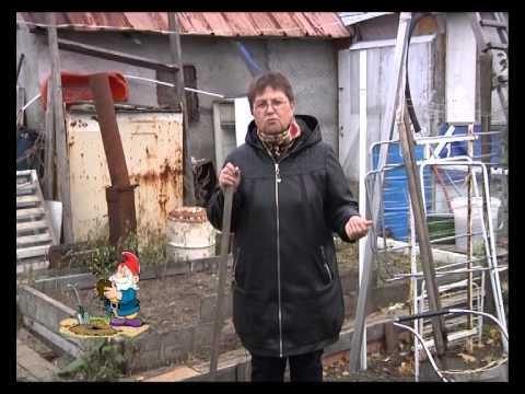 """Передача """"Волшебный росток"""". 02.10.2014"""