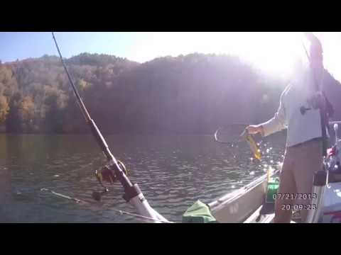 Catching Jumbo White Bass on Offshore Tackle Planner Boards
