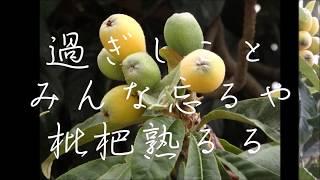 作詞:星野哲郎、作曲:米山正夫、編曲:小杉仁三 (≡^〟ω〟^)アカペラ...