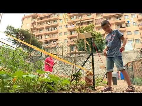 Un nouveau jardin partagé au sein du quartier Pasteur à Nice