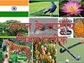 National Symbol of India in Hindi (भारत के राष्ट्रीय चिह्न/प्रतीक)