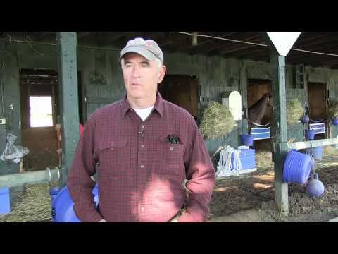 A Day In The Life Of A Racehorse Featuring Nick Zito