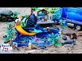 Fun Sea Animals Toys For Kids in the Playmobil Aquarium Playset - Let's Learn Wild Animal Names
