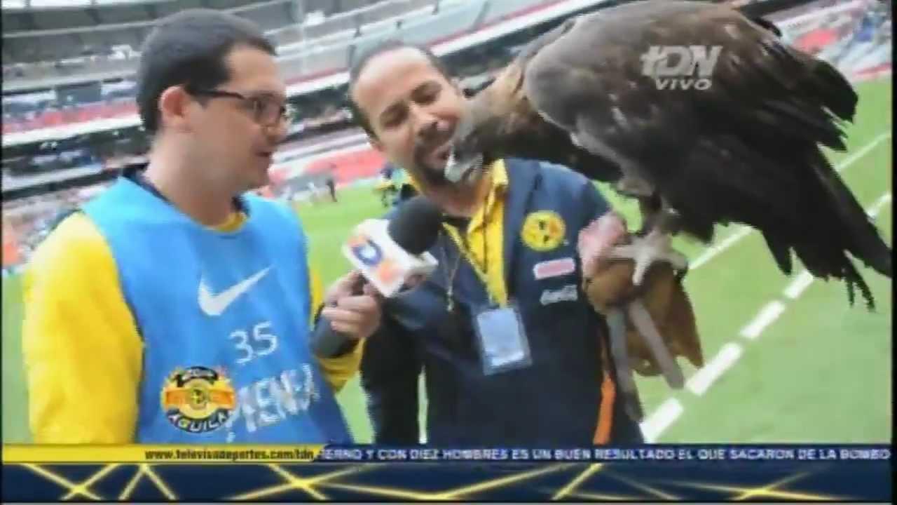 El Aguila Celeste Su Vuelo En El Estadio Azteca Youtube