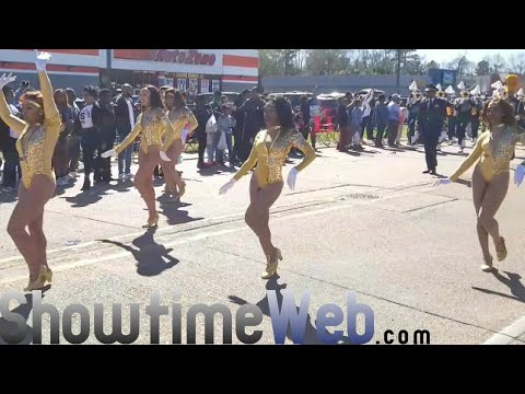 "Southern University ""Human Jukebox"" Marching Band - 2019 Mardi Gras Parade"