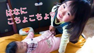 【赤ちゃんはな3か月☆こなつ4歳】こちょこちょ遊び♪