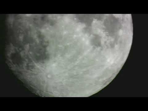 måne video af brian blom