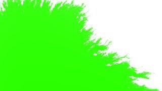 ink splatter effect green screen Mp4 HD Video WapWon