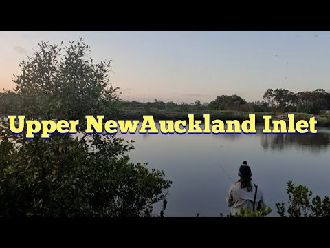 Land Based Fishing, Upper New Auckland Inlet, Gladstone, (Lowtide) (ep01)