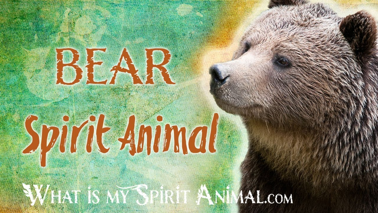 Bear Spirit Animal Bear Totem Power Animal Bear Symbolism