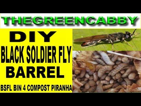 Diy Black Soldier Fly Barrel Bslf Bin New Design Composting