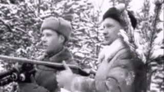 Охота  на зайца с гончими собаками в зимнем лесу. Московская область, 1962