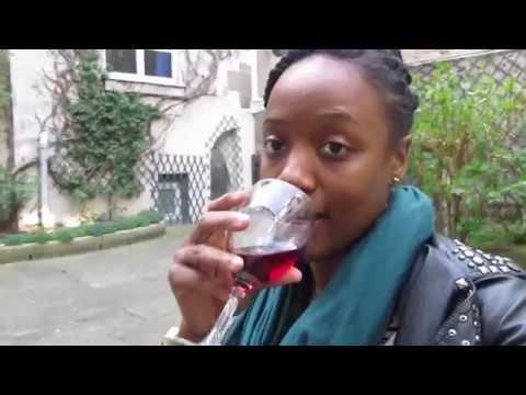 Mon voyage à Paris - My trip to Paris VLOG