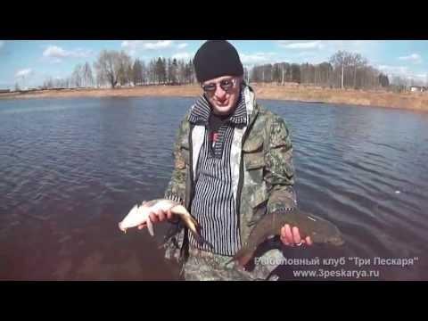 летняя рыбалка на карпа - 2013-05-01 14:42:35