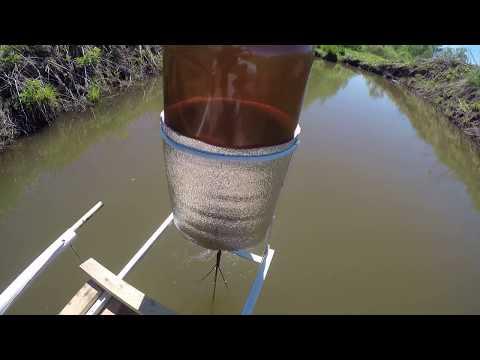 Устройство кормушки РЕФЛЕКС для прудовых рыб. Своими руками.