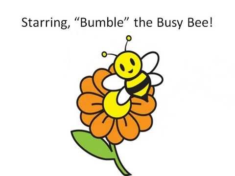 b is for bee an educational and fun program for kids