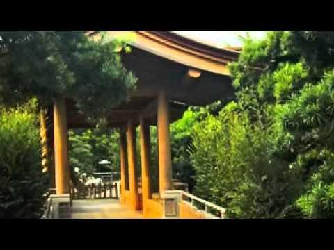 Taylor University MBA Hong Kong & China September 2010 Global Study Trip