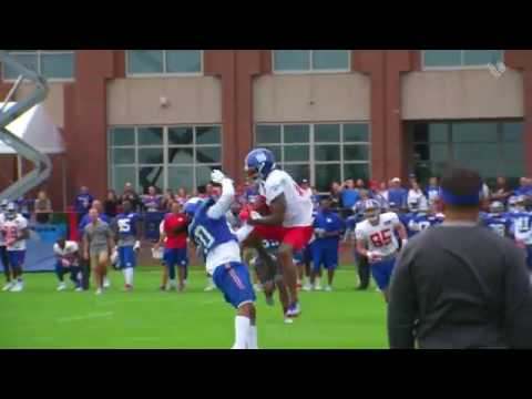 Brandon Marshall Top Play leaping catch